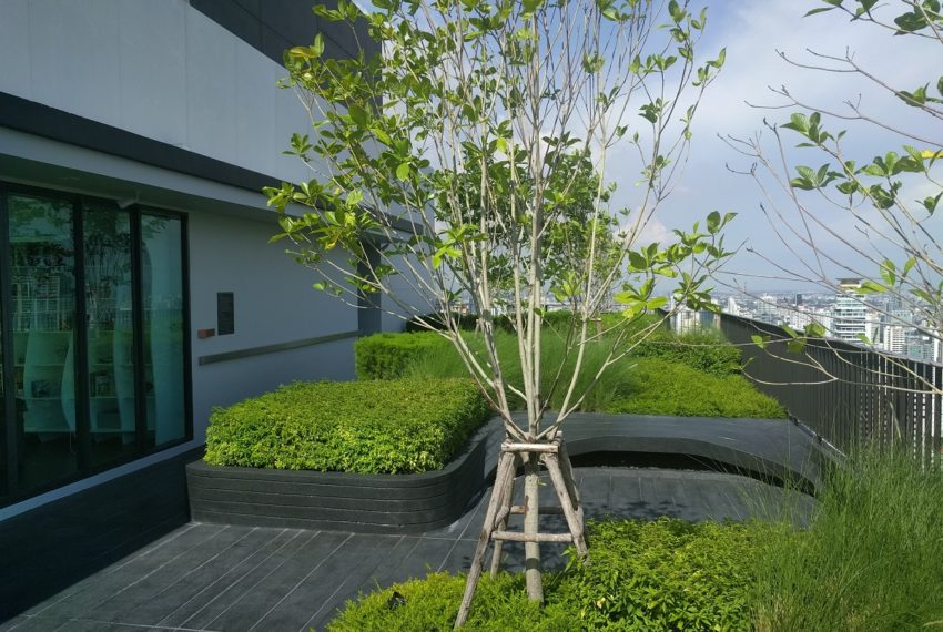 Edge Sukhumvit 23 roof garden and BBQ area - 04