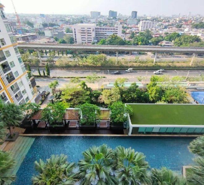 Apartment for sale near BTS PhraKhanong - 1 bedroom - pool view - Le Luk condominium