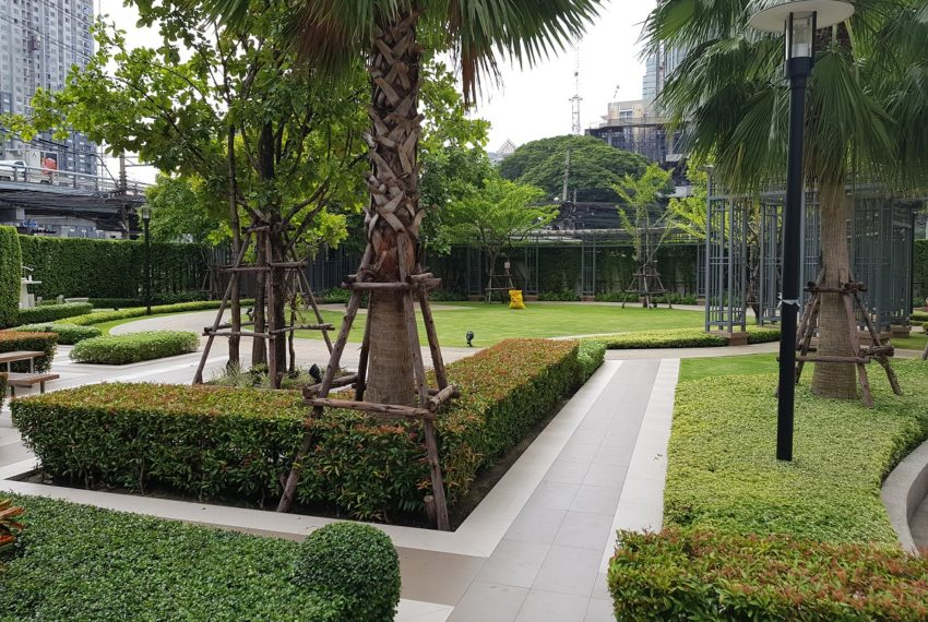 Q Asoke Condominium - entrance garden