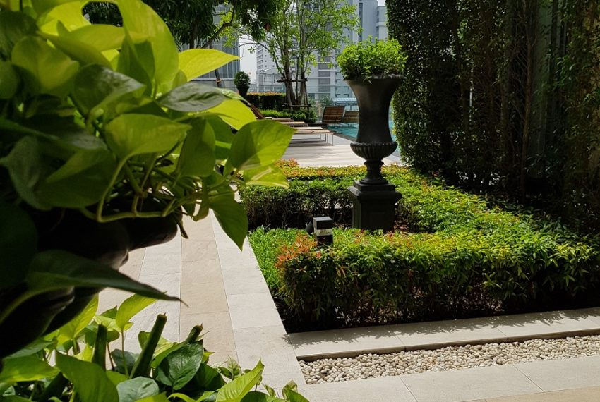 Q Asoke Condominium - garden with view