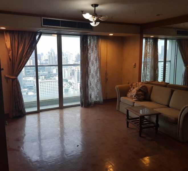 Sukhumvit Suite - apartment for sale - living
