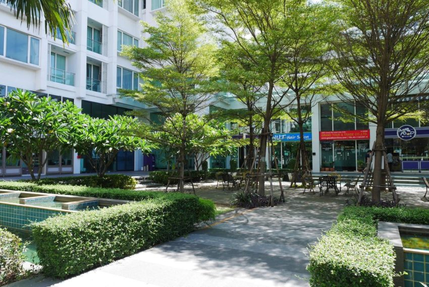 TC Green Condominium - garden