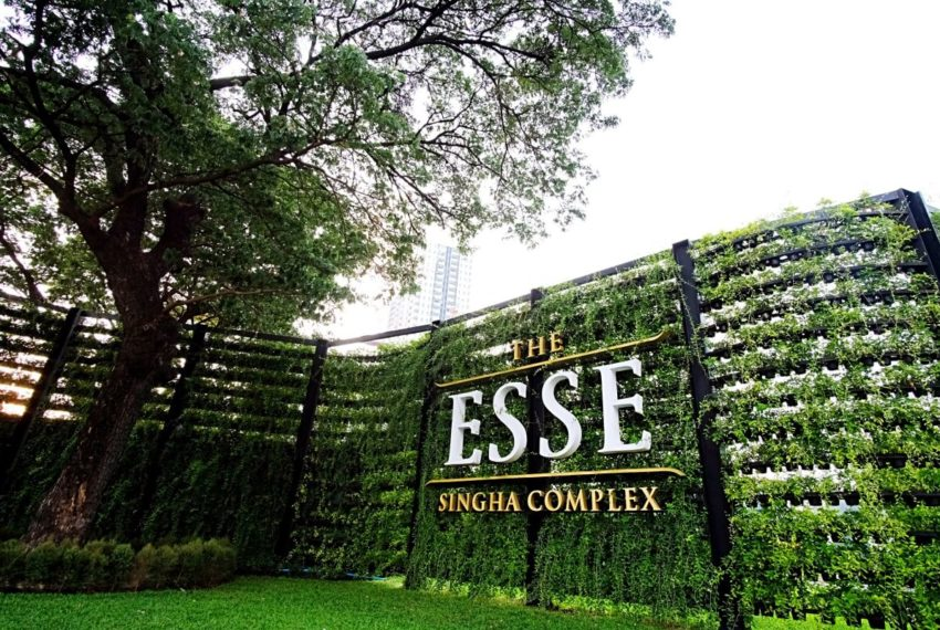 THE ESSE SINGHA COMPLEX entrance