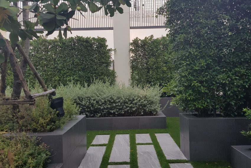 The Diplomat 39 - garden