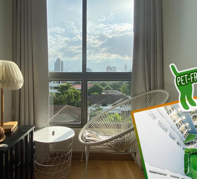 Downtown 49 Pet-Friendly Bangkok Condominium in Sukhumvit 49