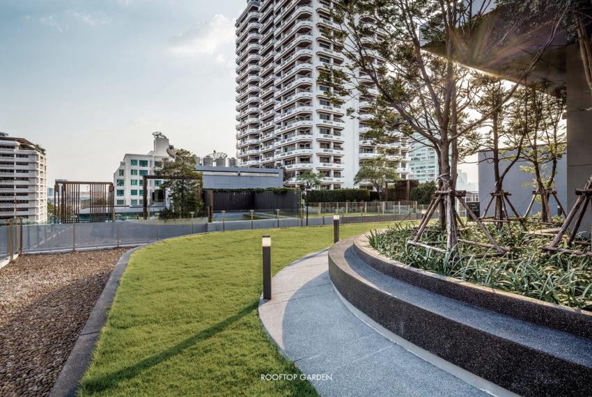 circle rein sukhumvit 12 - rooftop garden