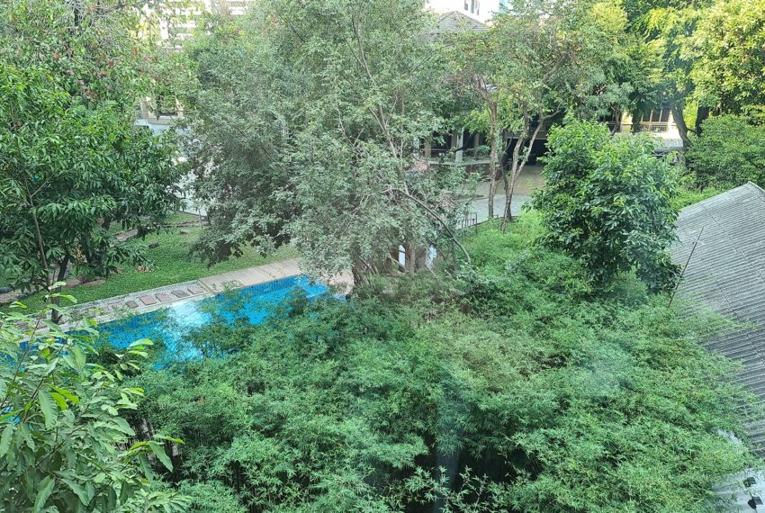 pool and greenery view